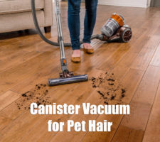 Best-Canister-Vacuum-for-Pet-Hair