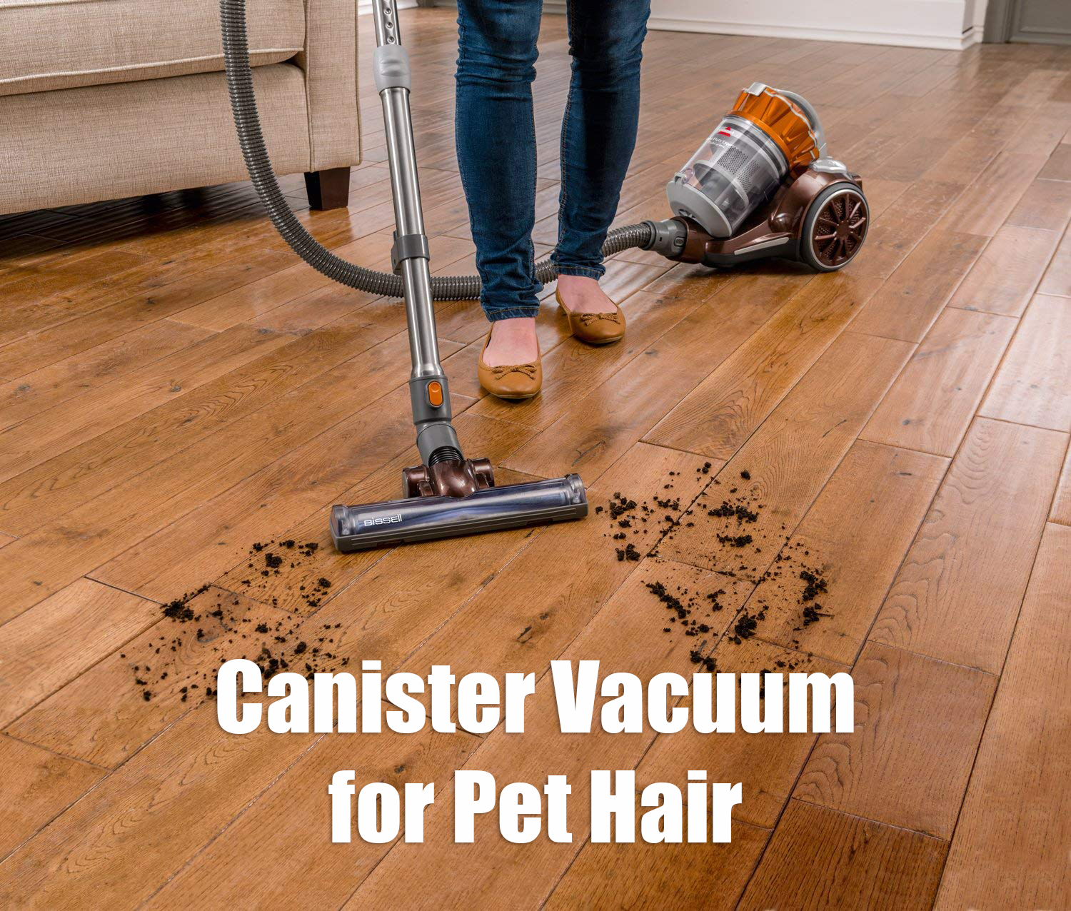 9 Best Canister Vacuum For Pet Hair