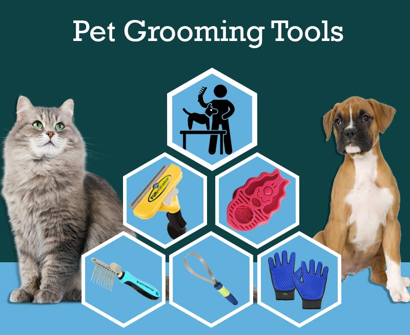 Best Grooming Tools for your Pooch