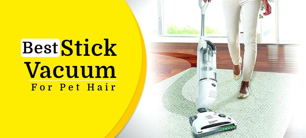 best stick vacuum for pet hair