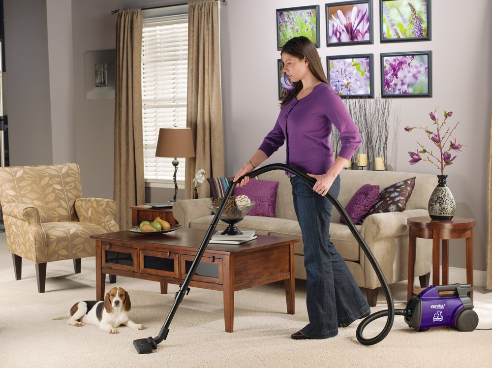eureka pet lover vacuum