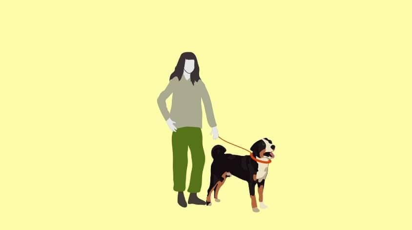 Adopting-a-pet